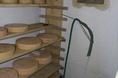 En el sótano de la casa el granjero había imitado las condiciones climáticas de una cueva para macerar quesos y tenía agua en movimiento, roca en el suelo y nada de luz
