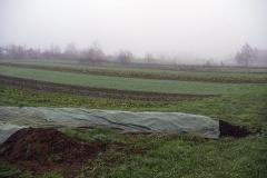 El compost tapado y las huertas al fondo