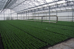 granja-biodinamica14