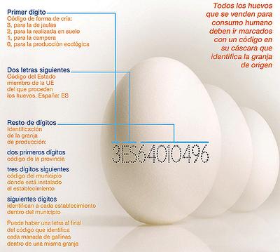 Numeración en los huevos