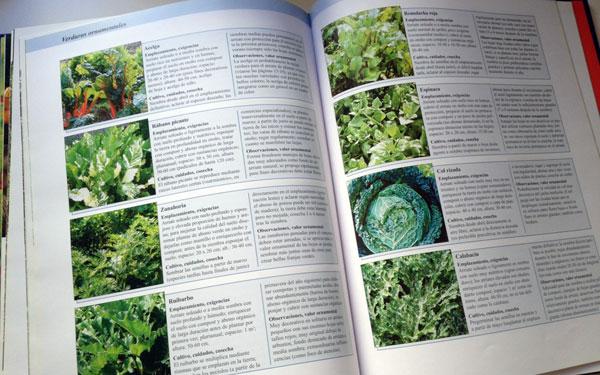 Fichas para hacer un jardín hortícola