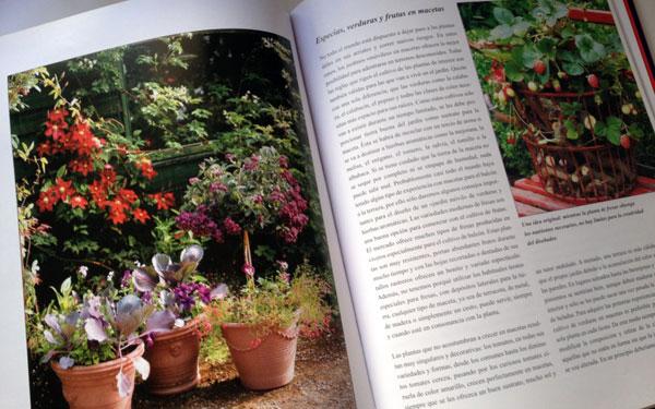 Jardines hortícolas en macetas