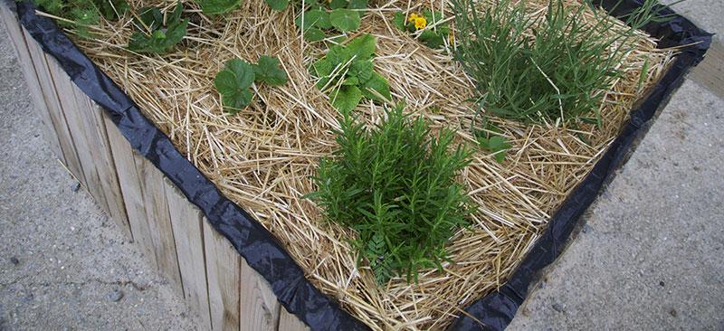 jardinera-pales